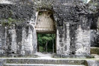 The Ruins of Tikal